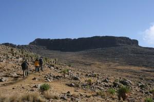 Ras Dashen_Simien_Endoethiopia_Trekking_2